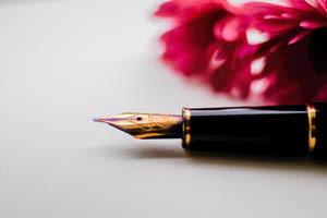 plniace pero a ružový kvet v pozadí