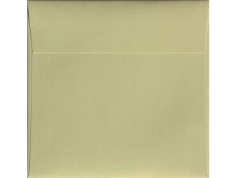 Obálky vizit. DL/120g Curious Metallics Ice Silver (bal=500ks)