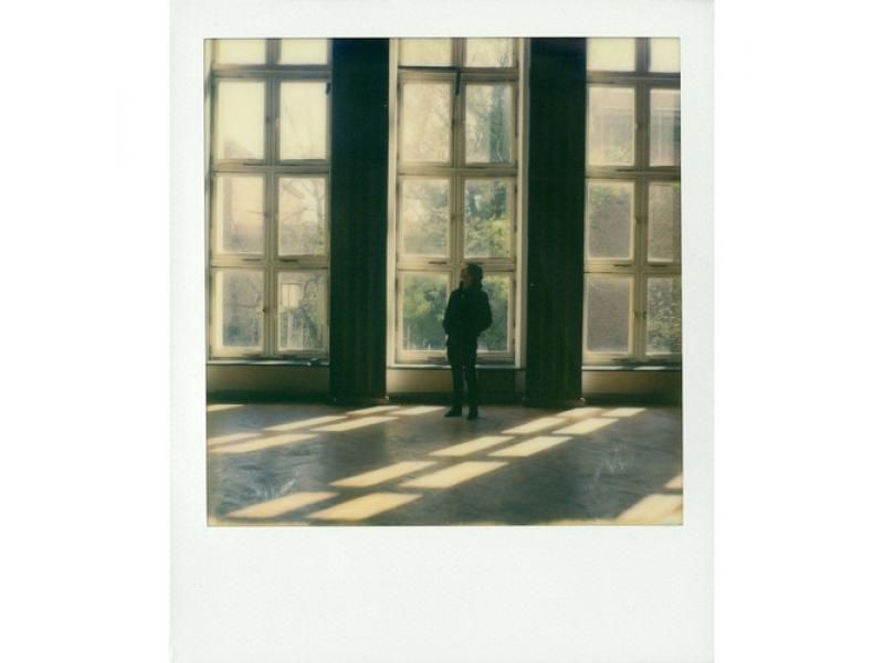 Impossible film pre Polaroid SX-70 COLOR  cc34616dce0