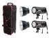 Fomei Digitalis Pro T400 Kit 2x400