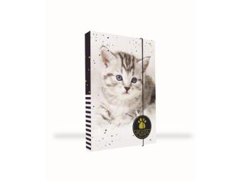 Box na zošity A4 s gumičkou, dizajn Jumbo Mačka